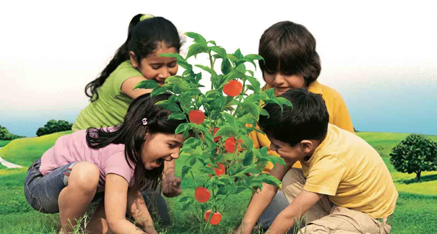 children-planting-trees1